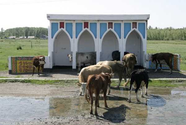 bus-stops-in-the-ussr (27)