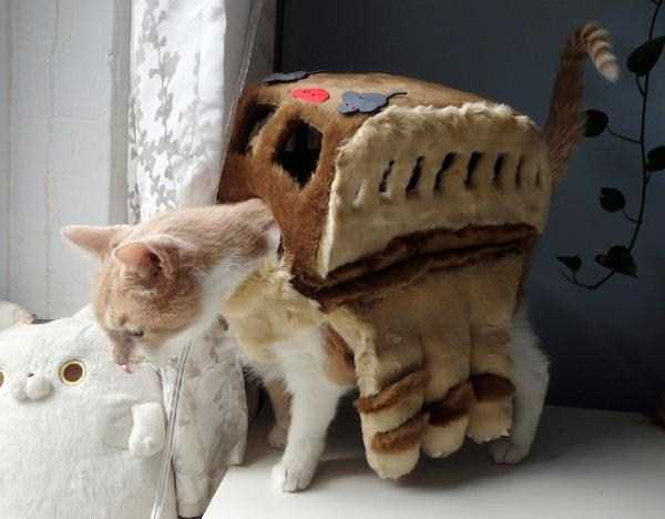cats-in-costumes (38)