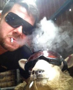 When Farmers Decide to Take Selfies (26 photos) 11