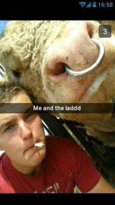 When Farmers Decide to Take Selfies (26 photos) 15