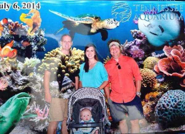 funny-aquarium-pictures (11)