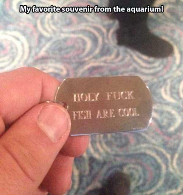 funny-aquarium-pictures (8)