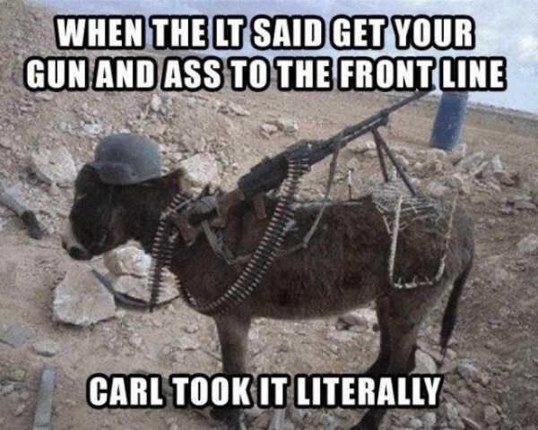 funny-dammit-carl-memes (11)