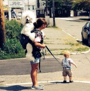 20 Wacky Techniques For Carrying Your Kid (20 photos) 13