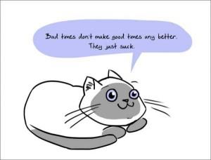 Brutally Honest Cats (18 photos) 3