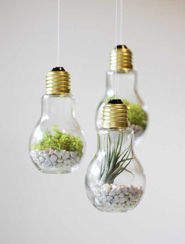old-reused-lightbulbs (1)