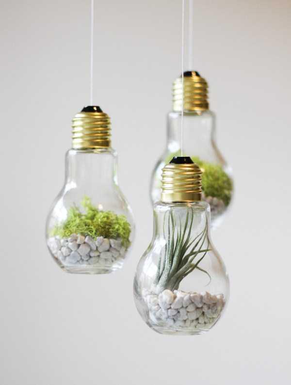 old-reused-lightbulbs (1)