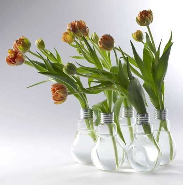 old-reused-lightbulbs (13)