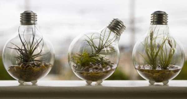 old-reused-lightbulbs (32)