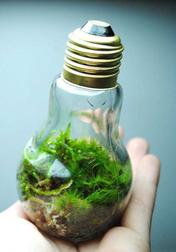old-reused-lightbulbs (7)