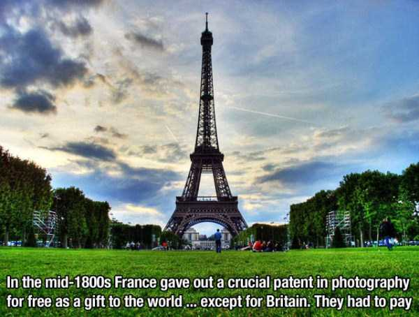 random-interesting-facts (9)