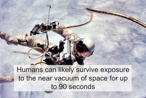 Cool Facts About Science (23 photos) 1