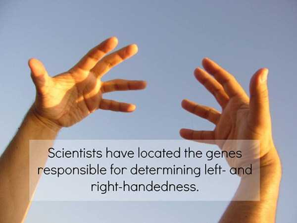 science-facts (6)