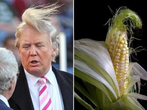 Donald Trump Look-Alikes (20 photos) 1