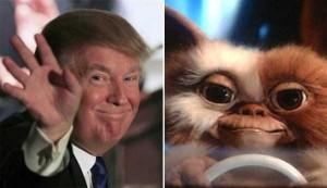 Donald Trump Look-Alikes (20 photos) 10