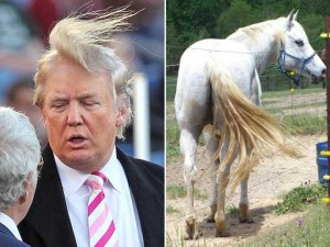 Donald Trump Look-Alikes (20 photos) 11
