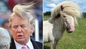 Donald Trump Look-Alikes (20 photos) 14
