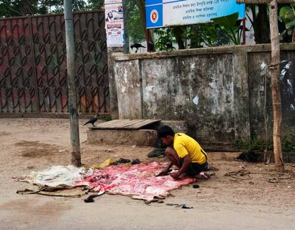 children-in-bangladesh (3)