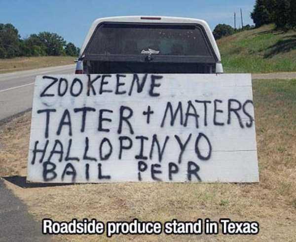 crazy-texas (12)