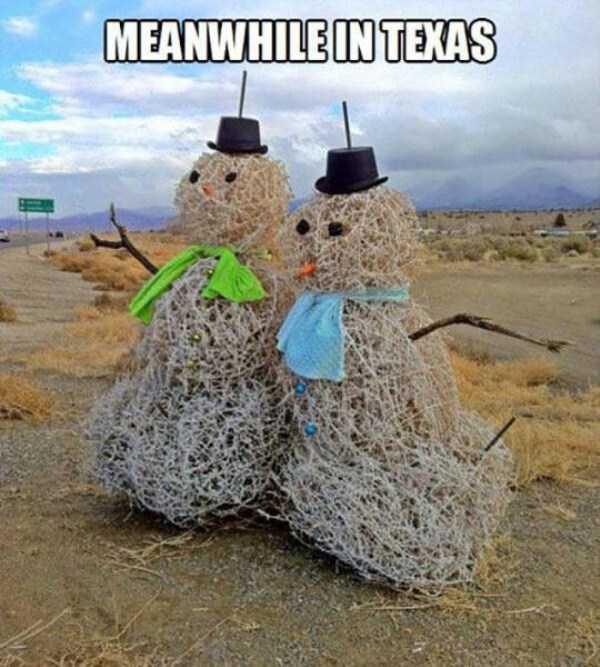 crazy-texas (6)