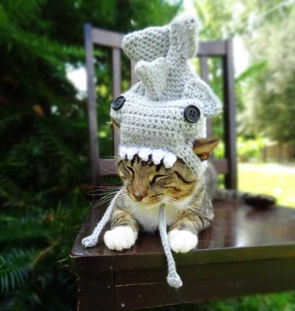 crocheted-pet-hats (12)