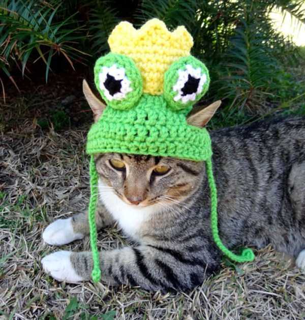 crocheted-pet-hats (15)
