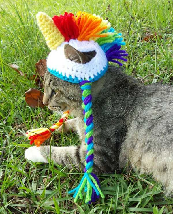 crocheted-pet-hats (16)