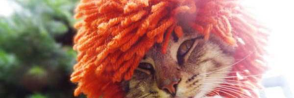 crocheted-pet-hats-(21)