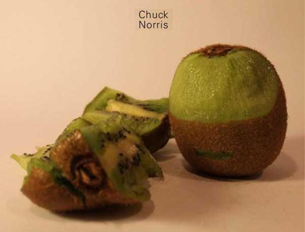 Anthony-Chidiac-carved-kiwi-fruits (10)