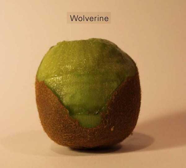 Anthony-Chidiac-carved-kiwi-fruits (16)