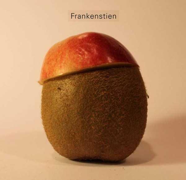 Anthony-Chidiac-carved-kiwi-fruits (17)