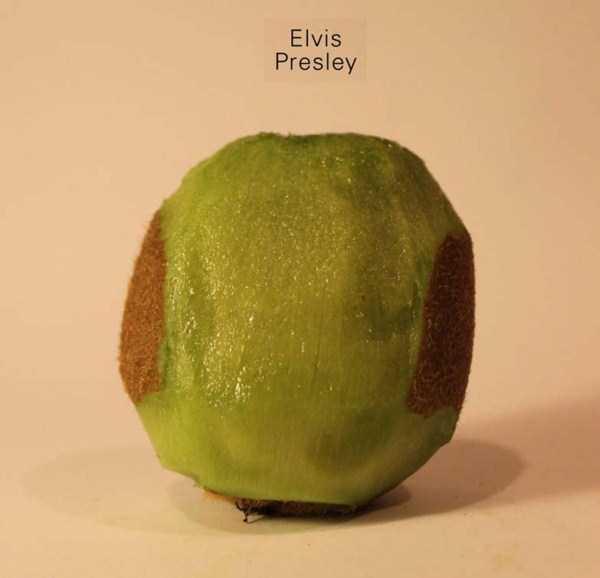 Anthony-Chidiac-carved-kiwi-fruits (20)