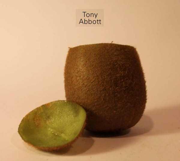 Anthony-Chidiac-carved-kiwi-fruits (28)