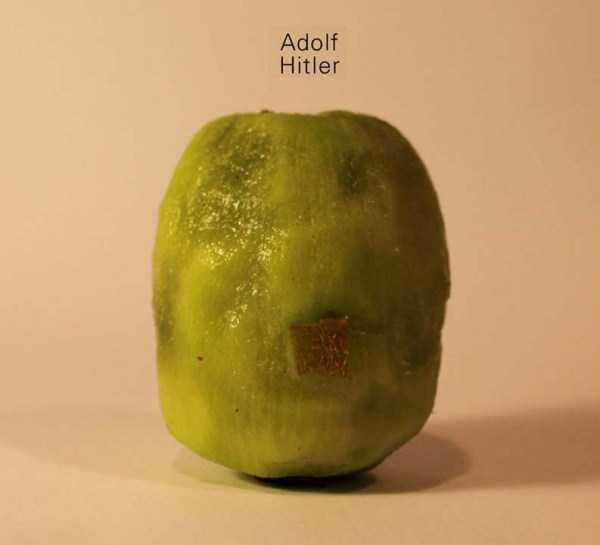 Anthony-Chidiac-carved-kiwi-fruits (5)