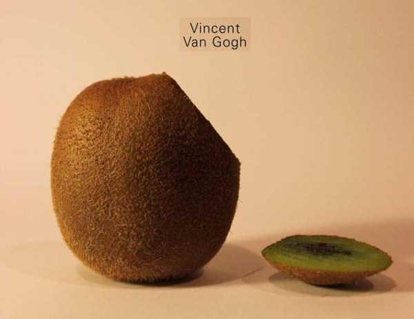 Anthony-Chidiac-carved-kiwi-fruits (8)