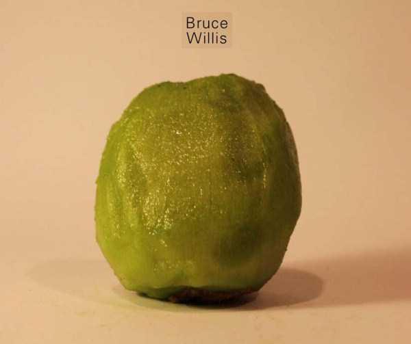 Anthony-Chidiac-carved-kiwi-fruits (9)