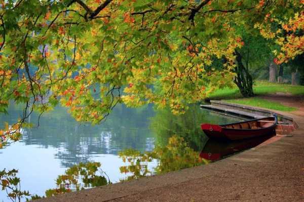 beautiful-fall-photos (10)