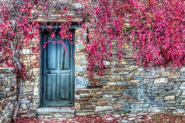 beautiful-fall-photos (16)