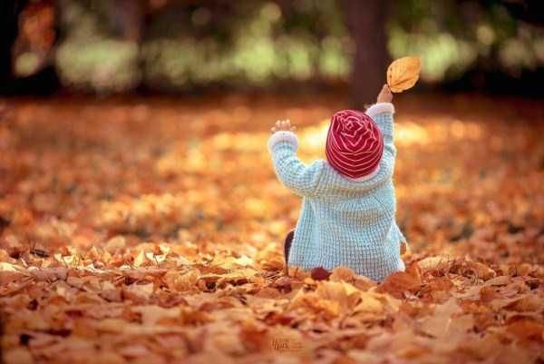 beautiful-fall-photos (18)