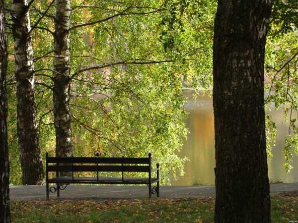 beautiful-fall-photos (29)
