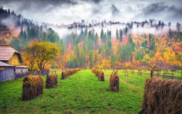 beautiful-fall-photos (3)
