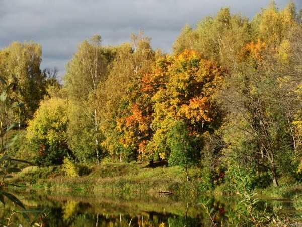 beautiful-fall-photos (30)