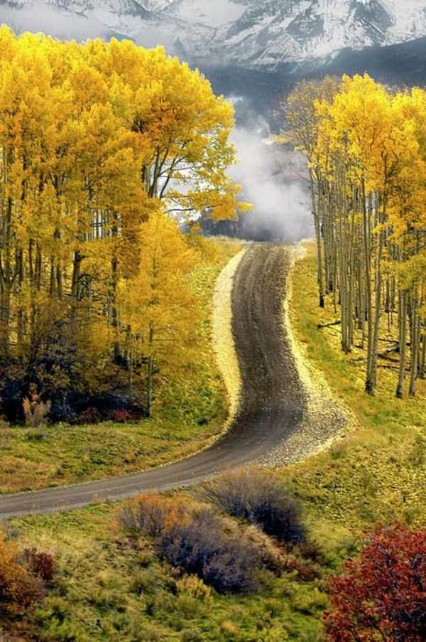 beautiful-fall-photos (34)