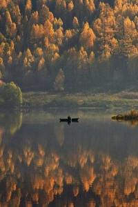 beautiful-fall-photos (38)