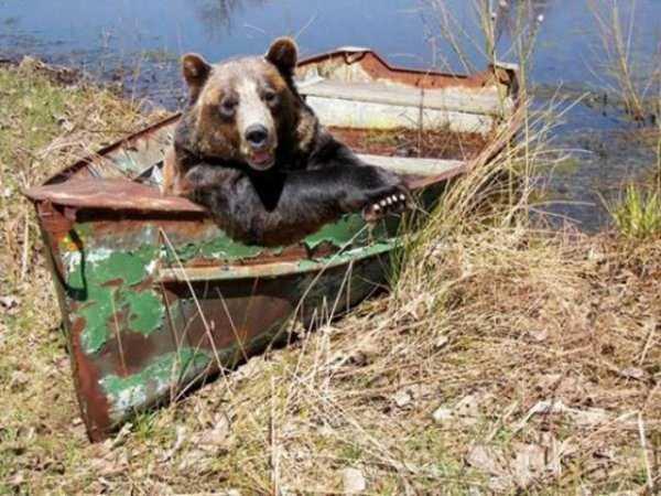 crazy-wtf-russia-photos (15)