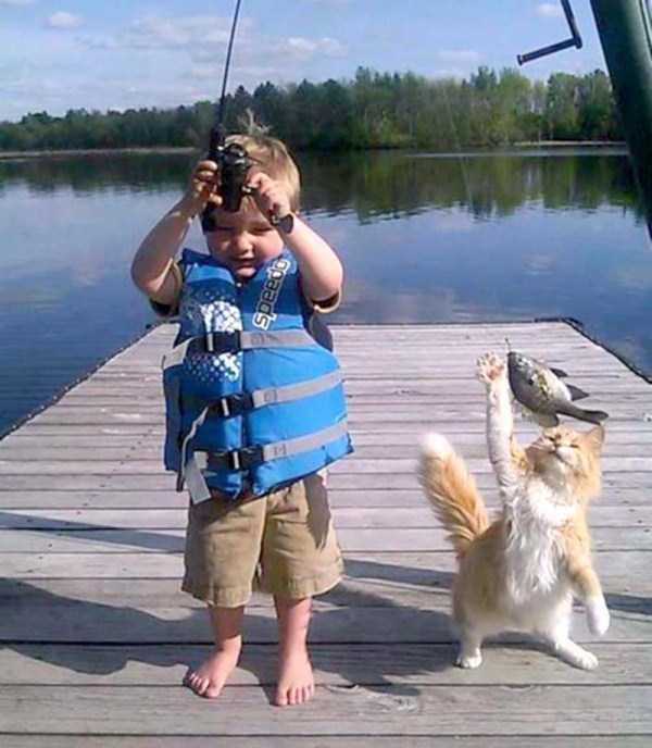 funny-cute-animals (7)