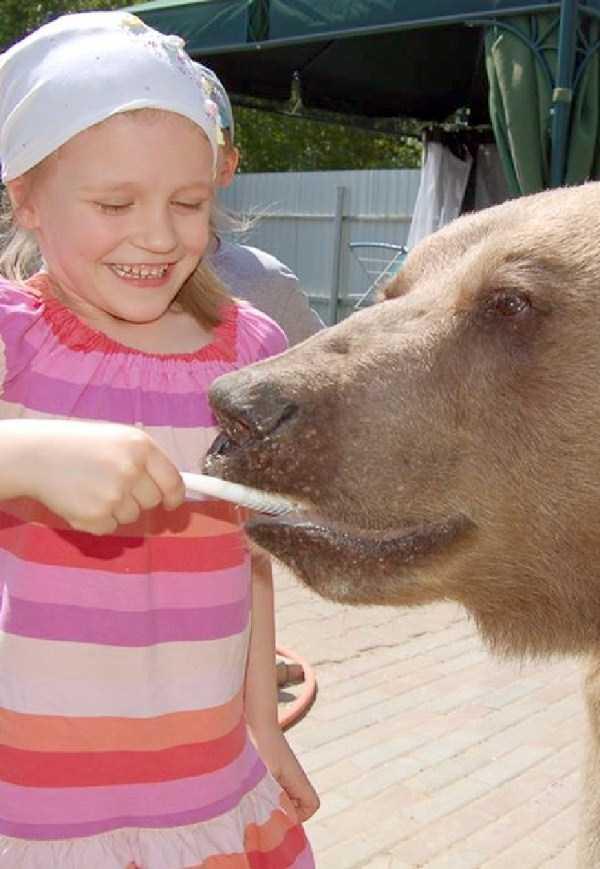 girl-with-bear (1)