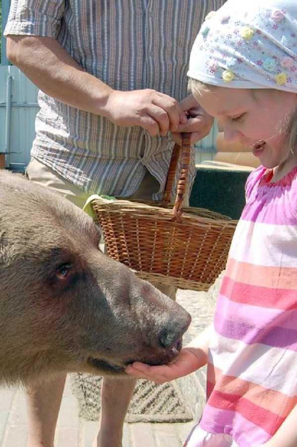 girl-with-bear (3)