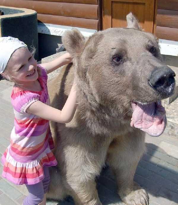 girl-with-bear (4)