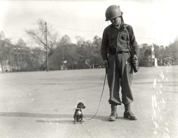 silly-wwii-pictures (1)